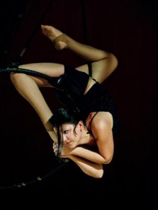Cirque Romanès – Voleurs de poules
